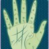 Palmistry Ring Finger