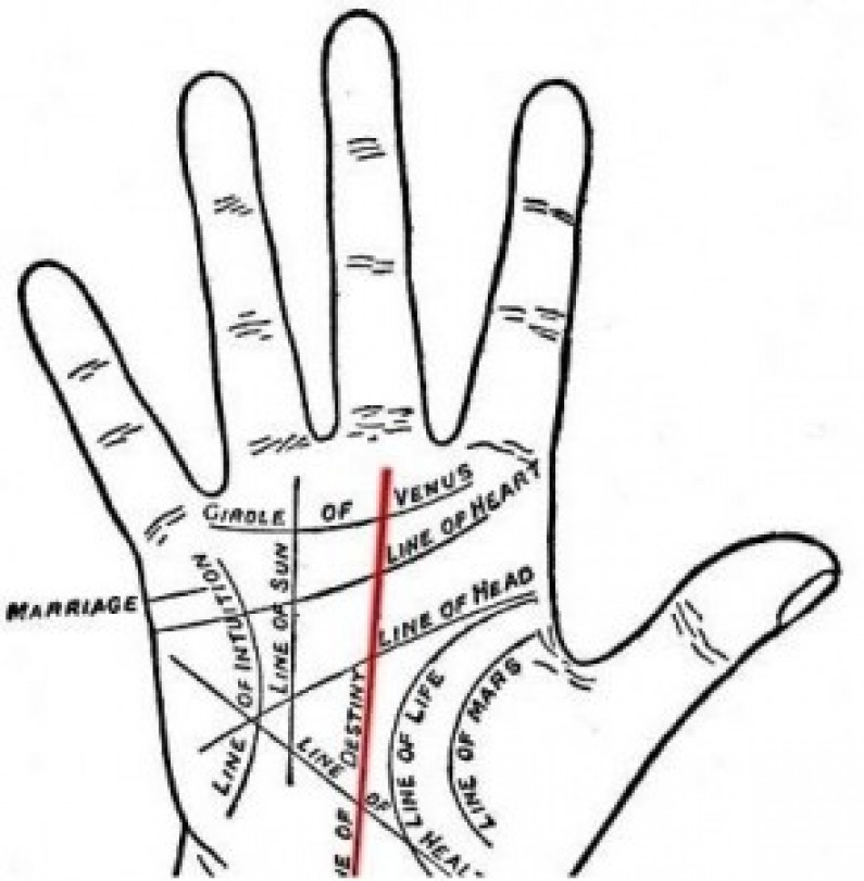 A Brief Idea of Palmistry