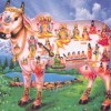 Cow Slaughter: Religion, Politics and Lifestyle