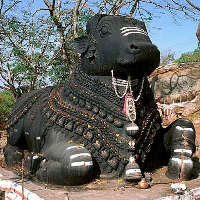 Significance of Nandi Bull in Religion