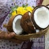 Importance of Coconut in Puja Rituals