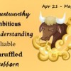 All About Taurus Man