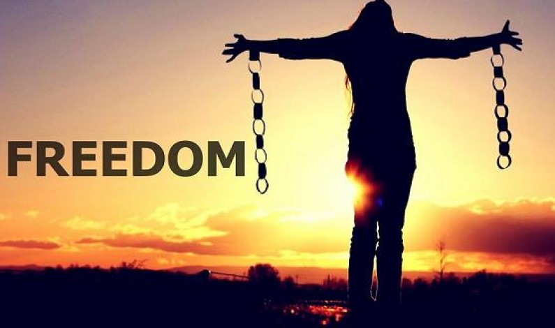 Freedom From MidNight