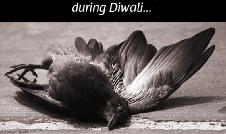 No Crackers This Diwali