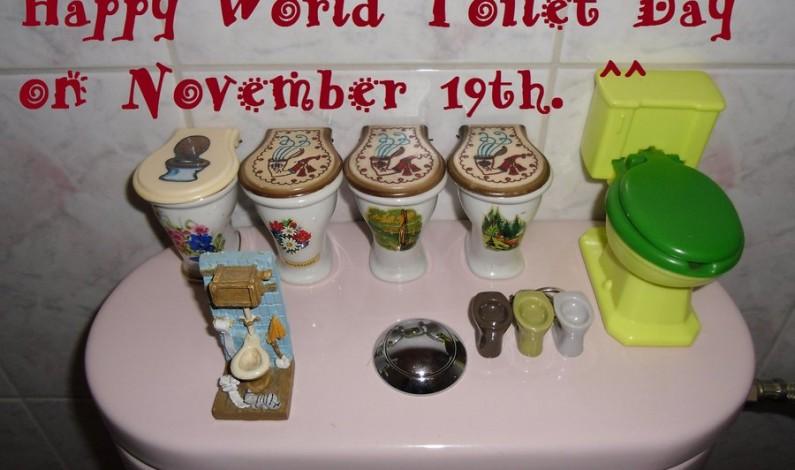 Happy World Toilet Day 2015