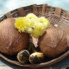 The importance of coconut in Hindu religion