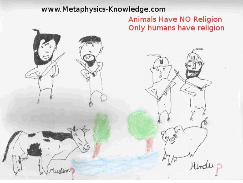 Animals Have No Religion: Humans Have!!