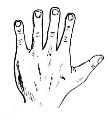 Spatulate Hand