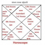 Astrology- Houses