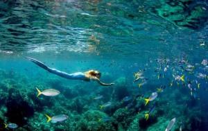 History of Mermaids